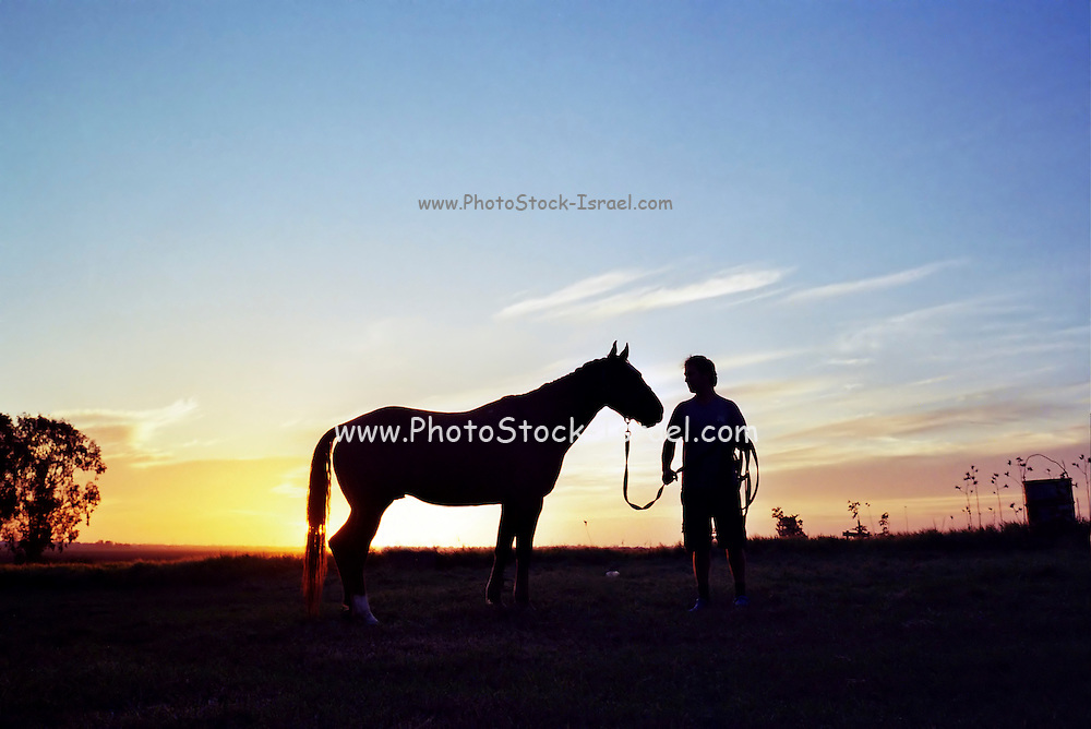 Silhouette of a man and his horse at sunset