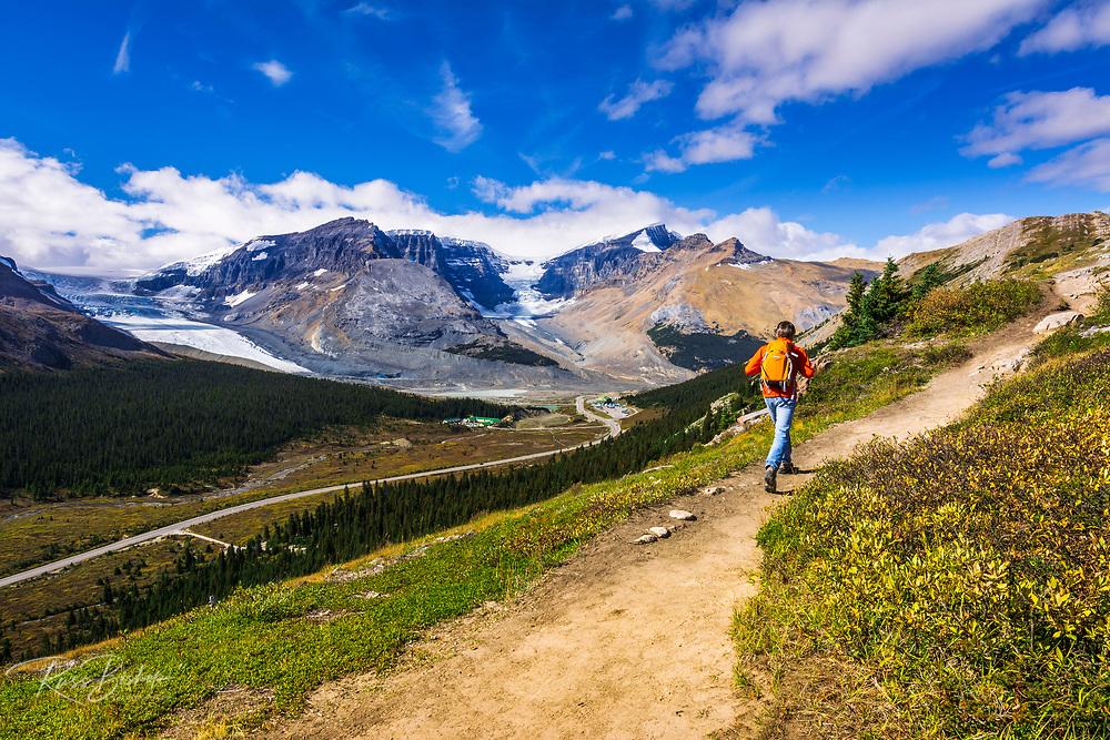 Hiker on Wilcox Ridge above the Columbia Icefields, Jasper National Park, Alberta, Canada