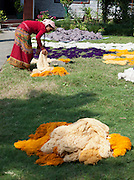 A Nepali woman lays freshly dyed cotton out to dry at Womens Skills Development Project in Pokhara, Nepal. The WSDP was set up in 1975 as a non-profit, fair trade organization to help disadvantaged women in Nepal.