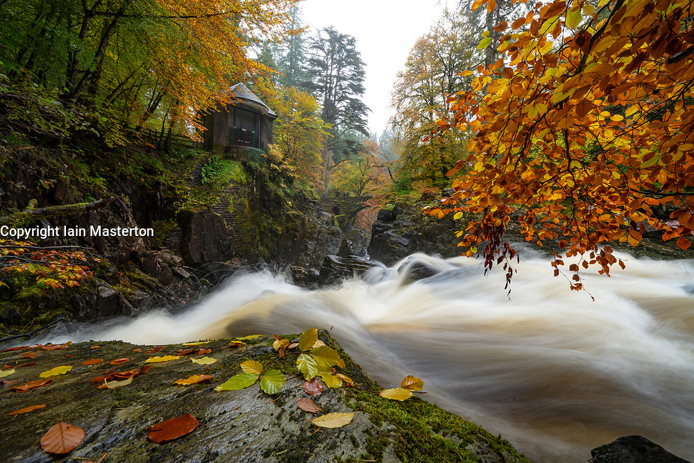 Dunkeld, Scotland, UK. 12 October 2020. Autumn colours on trees and River Braan in spate at The Hermitage near Dunkeld in Perth and Kinross. The site is a National Trust for Scotland protected site and a popular destination for the public to enjoy woodland walks in autumn  Iain Masterton/Alamy Live News
