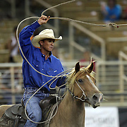 A safety rider chases a bull during the 129th performance of the PRCA Silver Spurs Rodeo at the Silver Spurs Arena   on Friday, June 1, 2012 in Kissimmee, Florida. (AP Photo/Alex Menendez) Silver Spurs rodeo action in Kissimee, Florida. PRCA rodeo event in Florida. The 129th annual running of the cowboy event.