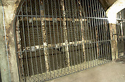 Old wine bottles stored behind lock and bars. Bottles aging in the cellar. Torres Penedes Catalonia Spain
