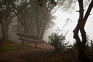 Feeling Misty