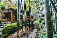 "Teahouse at Hokoku-ji Bamboo Garden - Hokoku-ji Kamakura is world famous for its bamboo garden containing more than 2000 Moso bamboos trees. Its nickname is Take-dera ""Bamboo Temple"" for that reason.  The bamboo garden is punctuated with stone lanterns, jizo and moss covered stones.  Besides the popular bamboo garden, and teahouse, Hokokuji also has a often overlooked Zen garden   Ashikaga Ietoki, ordered Zen priest Tengan Eko to establish Hokoku-ji. This temple became the family temple of the Ashikaga clan. Tengan was a disciple of Mugaku Sogen a contemporary of famous garden designer Muso Kokushi."