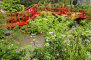 Trailfinders undiscovered Latin America Garden - Press preview day at The RHS Chelsea Flower Show.