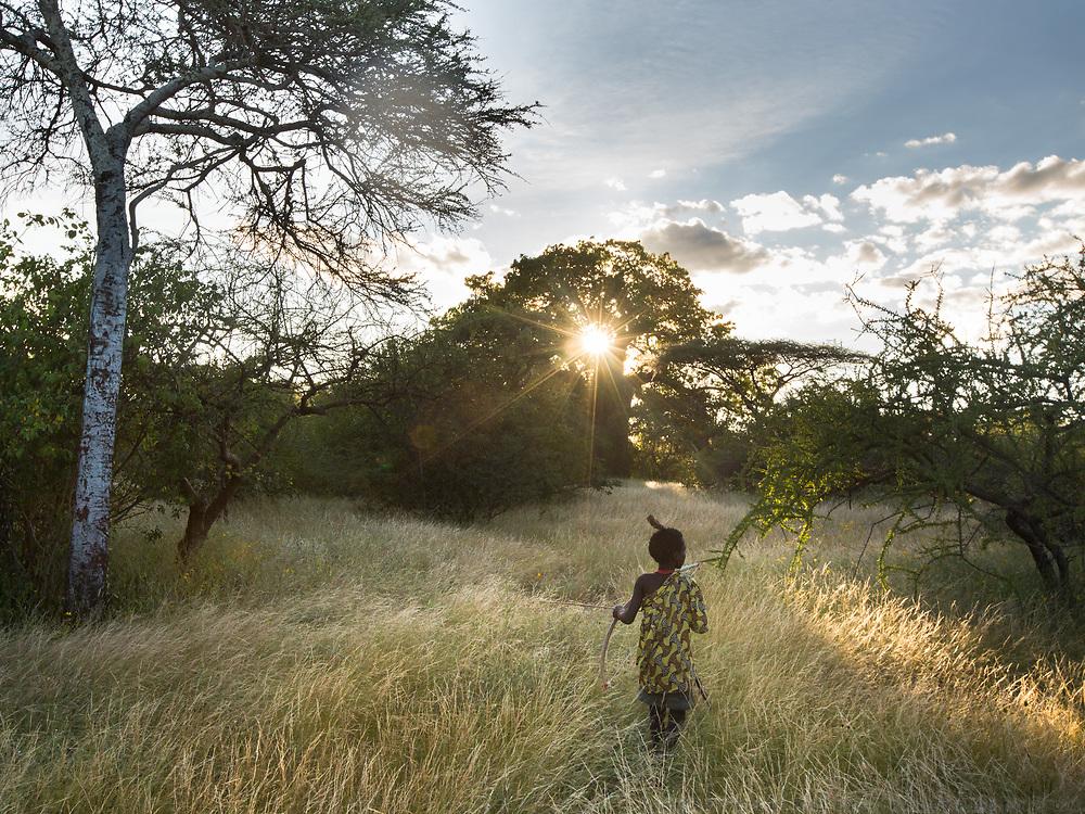 Makungu hunting birds at sunset. At the Hadza camp of Senkele.
