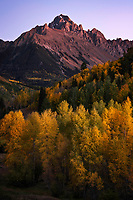 The last hint of a fading sun shines off from the peak of Mt. Sneffels in Southwest Colorado and illuminates the golden aspen leaves of Fall.