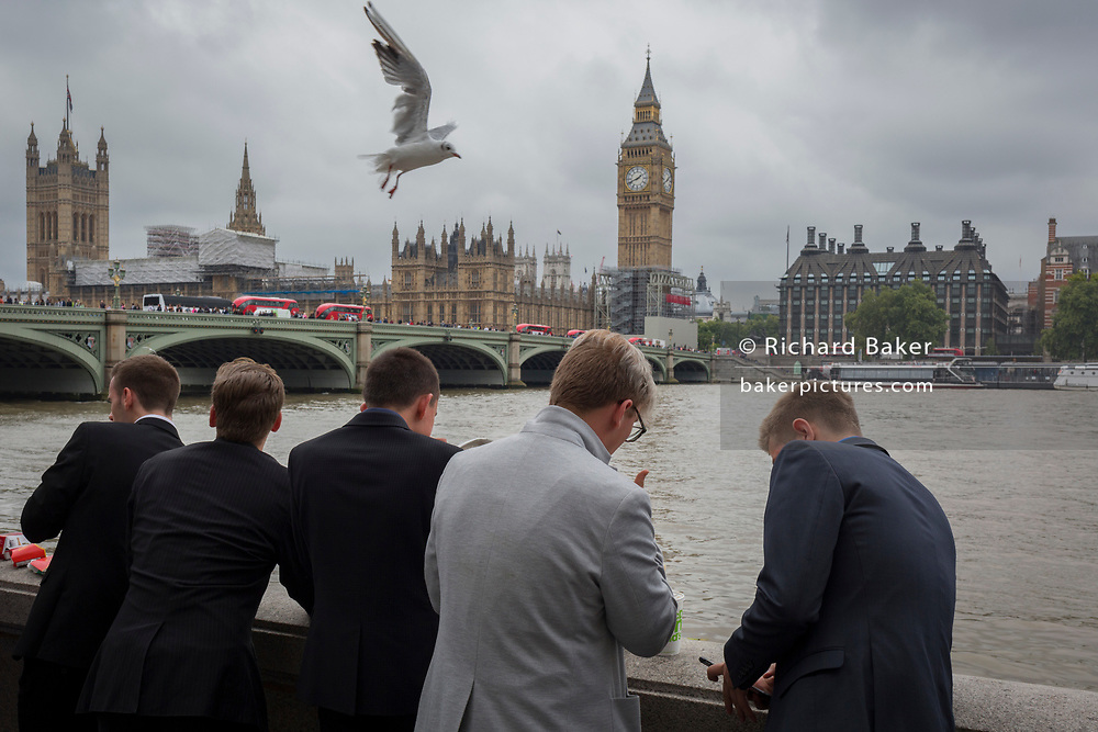 As a seagull flies overhead, young men wearing suits look out across the River Thames towards the Houses of Parliament in Westminster, on 21st August 2017, in London, England.