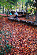 Two children on raised walkway, ground carpeted in red and orange leaves. Plitvice National Park, Croatia