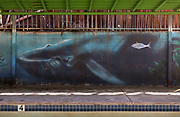 USA-California-poolside mural of whales. Hot spring spa.