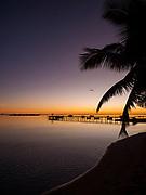 Sunrise, Les Tipaniers Hotel, Tiahura, Moorea, French Polynesia, South Pacific