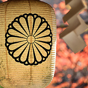 Chochin paper lantern and Shide (Shinto paper folding) at Kifune Shrine in Kyoto, with brilliant orange-red autumn foliage of momiji Japanese maple trees in the background.