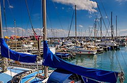 Pleasure craft in the harbour in Anstruther, Fife, Scotland<br /> <br /> (c) Andrew Wilson | Edinburgh Elite media