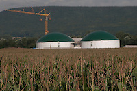 Biogas-Anlage in Bau. Im Vordergrund wächst der Mais zum Befüllen. | Biogas plant under construction while in the foreground maize is growing to fill it.