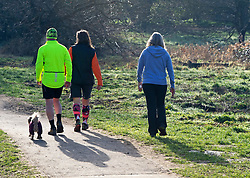 © Licensed to London News Pictures 27/02/2021.        Sidcup, UK. Walkers getting some early sun. People get out of their homes from a third national Coronavirus lockdown to enjoy some sunny morning weather at Footscray Meadows in Sidcup, South East London. Photo credit:Grant Falvey/LNP