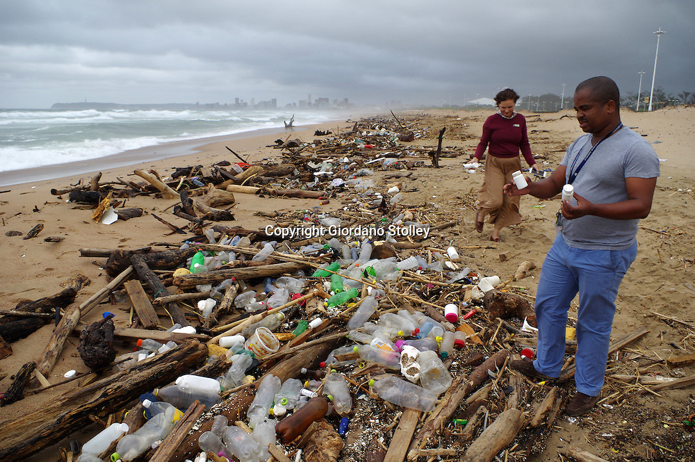 DURBAN - 18 May 2016 - Khumbulani Dlongolo, the eThekwini Metro Municipality's acting manager responsible for beaches retrieves some of the medical waste that was found on the Blue Lagoon Beach next to the mouth of the Umgeni River. The waste, which consited primarily of tablits and sealed condoms, was found in among the debris littering the beach that had been cast ashore with recent heavy rains. Picture: Allied Picture Press/APP