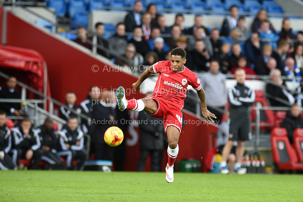 Kadeem Harris of Cardiff city in action. Skybet football league championship match, Cardiff city v Brentford at the Cardiff city stadium in Cardiff, South Wales on Saturday 20th December 2014<br /> pic by Andrew Orchard, Andrew Orchard sports photography.