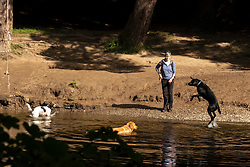 The sun brought out many people and dogs to enjoy the River Tweed which runs through the town of Peebles