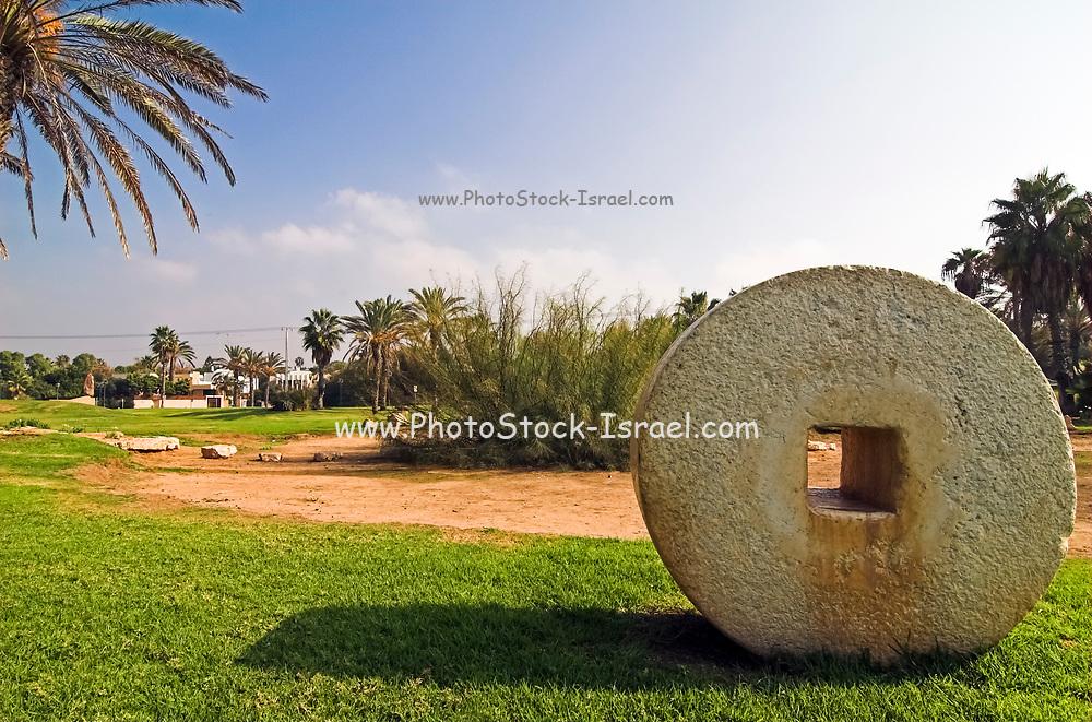 Israel, Herzliya city park, with ancient grindstones on display
