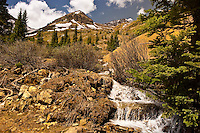Yankee Boy Basin, above Ouray, Colorado USA