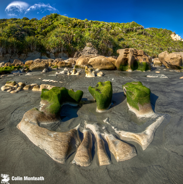 Limestone boulders, eroded and algae covered at low tide, Woodpecker bay, Paparoa National Park, West Coast.