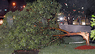 6/8/08 Omaha, NE Storm damage from a possible  tornado in Millard area 132nd and Q streets..(chris machian/Omaha World Herald)