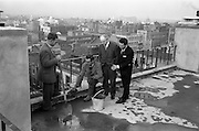 "18/04/1963<br /> 04/18/1963<br /> 18 April 1963<br /> ""Topping Off"" Jury's Hotel new extension. Watching John McCale (Cabe?) and Tony O'Neill ""Topping Off"" the 100ft high new extension to Jury's Hotel were John O'Brien, Chairman and Wilhelm Opperman, General Manager, Jury's Hotel Ltd. In the new wing each room was air conditioned and temperature controlled. The structure of the building was of reinforced concrete - about 4,000 cubic yards of concrete and 360 tons of reinforcing bars. The building contractors were M.J. Davis Ltd. and the architects were Kidney and Co."