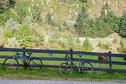 Cycling tour in Tyrol, Austria. Two bicycles in the foreground and lush green pasture with cows and forset on the mountain side in the background. Photographed in Stubaital, Tyrol, Austria,