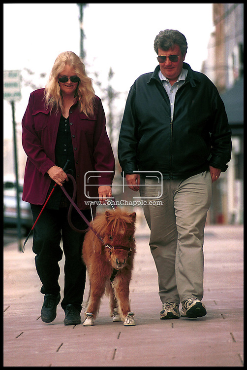 1st February 2001, Kittrell, North Carolina. Don and Janet Burleson with Cuddles, a pigmy horse, who is the first guide horse for the blind. <br /> <br /> Photo Copyright John Chapple / www.JohnChapple.com