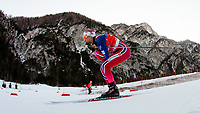 Langrenn  , PLANICA,SLOVENIA,17.JAN.16 - NORDIC SKIING, CROSS COUNTRY SKIING - FIS World Cup, 1.2 km team sprint free, women. Image shows Heidi Weng (NOR).<br /> Norway only