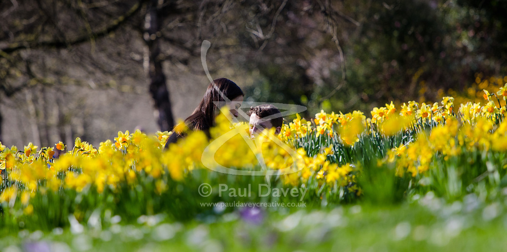 St James's Park, London, March 17th 2017. As London is bated in warm sunshine, people enjoy a their lunchbreak in St James's Park.
