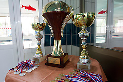 Trophy for a national champion of Slovenian Water polo National Championship, on June 23, 2012 in Olympic pool, Kranj, Slovenia. ASD Koper defeated Triglav Kranj 9-8. (Photo By Grega Valancic / Sportida.com)