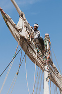 Salah, one of two people who work on a felucca that takes tourists on overnight sailing trips from Aswan down the Nile River, works high atop the mast to repair a damaged sail and rigging. (April 6, 2010)