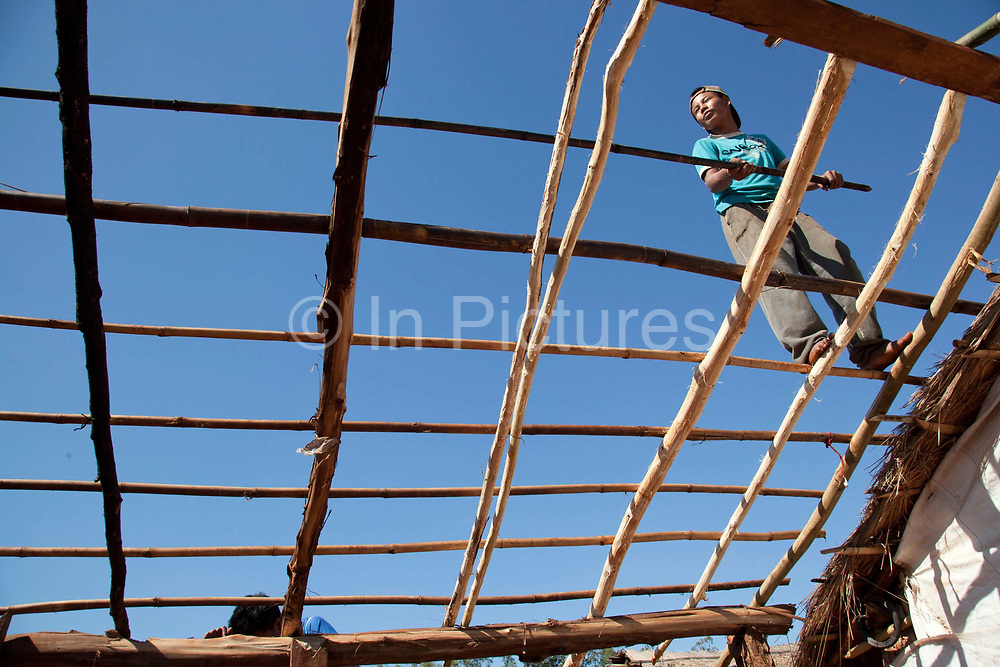 Young Guarani man building the roof of a tradtional wooden hut. The Guarani are one of the most populous indigenous populations in Brazil, but with the least amount of land. They mostly live in the State of Mato Grosso do Sul and Mato Grosso. Their tradtional way of life and ancestral land is increasingly at risk from large scale agribusiness and agriculture. There have been recorded cases and allegations of violence between owners of large farms and the Guarani communities in this region.