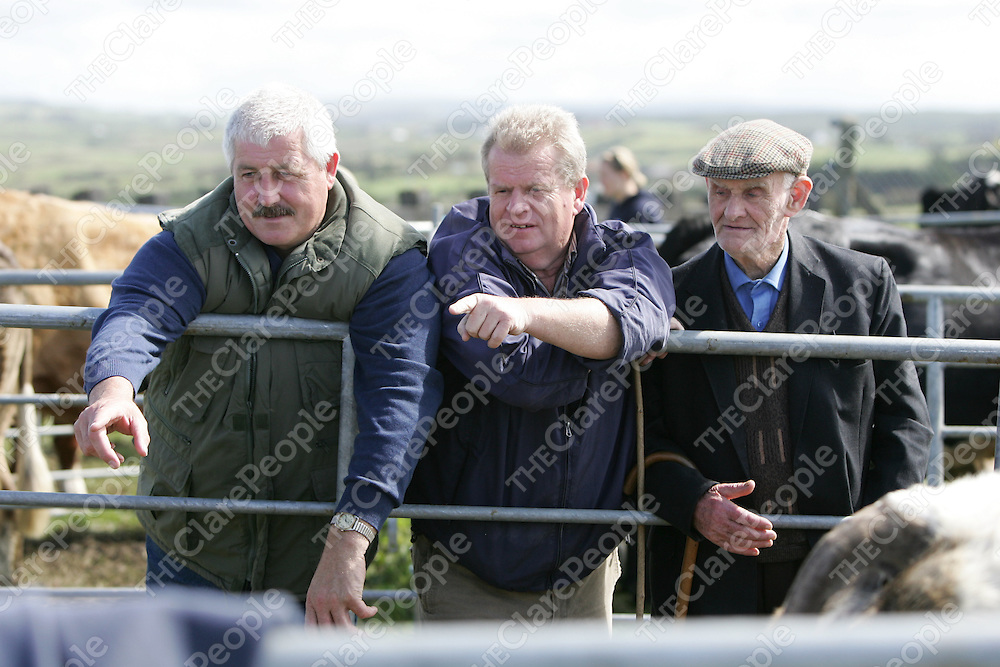 PIctured at the Mullagh show in County clare on Sunday 21st August 2011 were Michael Lynch, Michael McCarthy & John O'Leary (MUllagh)<br /> Emma Jervis Press 22