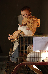 Fayoume, Egypt: Wael,16, who lives in Hamidia village in Fayoume, Egypt shows a neighbor, Ahmad, 6 months, one of his rabbits that is part of a telefood program funded byt FAO December 7, 2005.   The project has given him enough money to pay for school and buy goats for his family. .(Photo Ami Vitale).