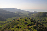 Lush green winter vegetation and foliage in the Golan Heights, Israel