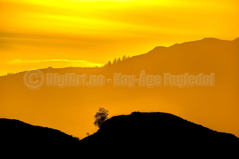 Sunset over graded landscape, with silhouette | Solnedgang i gradert landskap, med silhuett.