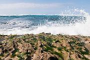 Waves break on the rocky shore of Turtle Bay on Oahu.