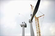 Nederland, Ressen, 1-9-2016 Montage van een van vijf nieuwe windmolens van de coöperatie Windpower Nijmegen. Ze gaan een windpark realiseren in Nijmegen-Noord, langs de snelweg A15. Leden kunnen meebeslissen binnen de coöperatie en investeren in het windpark. Daarnaast kunnen leden 100% groene stroom afnemen. Naar verwachting gaat het windpark energie opleveren voor 8.900 huishoudens. WindpowerNijmegen is een cooperatie, met leden uit Nijmegen en Overbetuwe, maar ook daarbuiten. Een belangrijk doel van de coöperatie is om met zoveel mogelijk leden eigenaar te worden van Windpark Nijmegen-Betuwe.FOTO: FLIP FRANSSEN