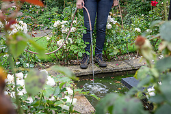 Topping up water levels in a pond with a hosepipe during the summer.