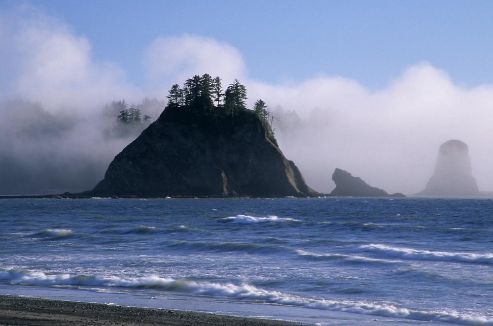 Sea stacks in fog, Rialto Beach, Olympic National Park, Washington, United States