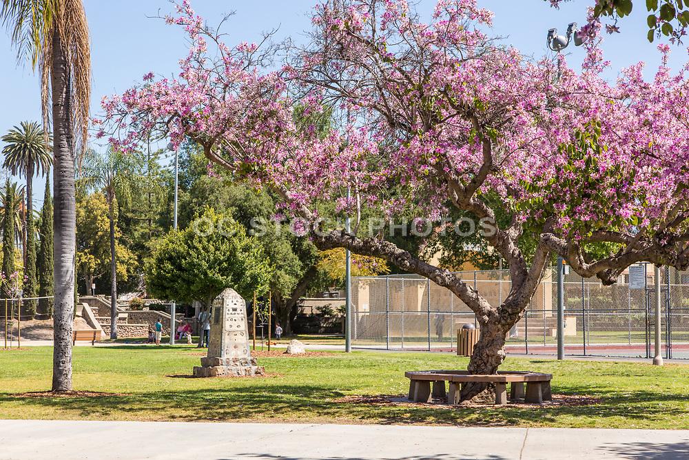 Hart Park in Orange California