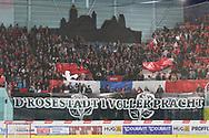 SCRJ Fans im Playoff Final Spiel der NLB zwischen den SC Rapperswil-Jona Lakers und dem HC Aioje, am Sonntag, 20. Maerz 2016, in der Diners Club Arena Rapperswil-Jona. (Berend Stettler)
