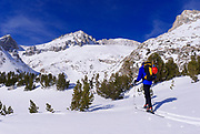 Backcountry skier under Mount Abbot, John Muir Wilderness, Sierra Nevada Mountains, California USA