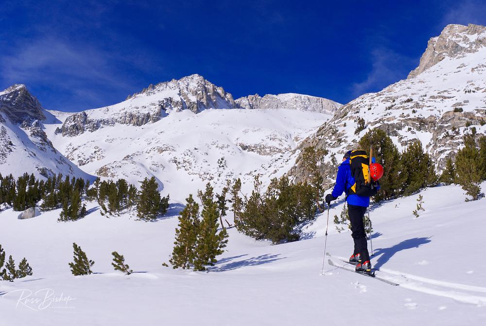 Backcountry skier under Mount Abbot, John Muir Wilderness, Sierra Nevada Mountains, California USA
