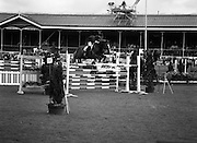 "08/08/1987<br /> 08/08/1987<br /> 08 August 1987<br /> RDS Horse Show, Ballsbridge, Dublin. The Irish Trophy - Grand Prix of Ireland. Eddie Macken on ""Carroll's Flight""."
