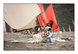 Brewin Dolphin Scottish Series 2010, Tarbert Loch Fyne - Yachting..Day one stated late but resulted in good conditions on Loch Fyne..GBR1236L ,Roxy 6 ,Rob Davies ,Neyland YC ,Corby 36, Class 2..