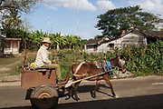 Old Cuban man riding a horse and cart trap wearing a stetson hat with a bike in the background, Palmira village in Cienfuegos province, Cuba