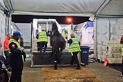 Hunter Douglas Sunrise of Imke Schellekens-Bartels<br /> Alltech FEI World Equestrian Games - Kentucky 2010<br /> © Dirk Caremans